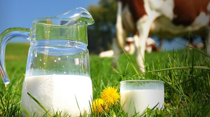 Как проверить качество молока самостоятельно