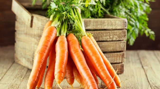 Целебные свойства моркови