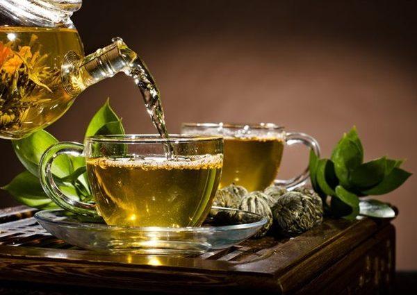 Польза зеленого чая для организма